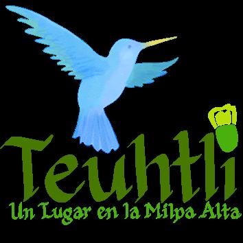 teuhtli.blogspot.com