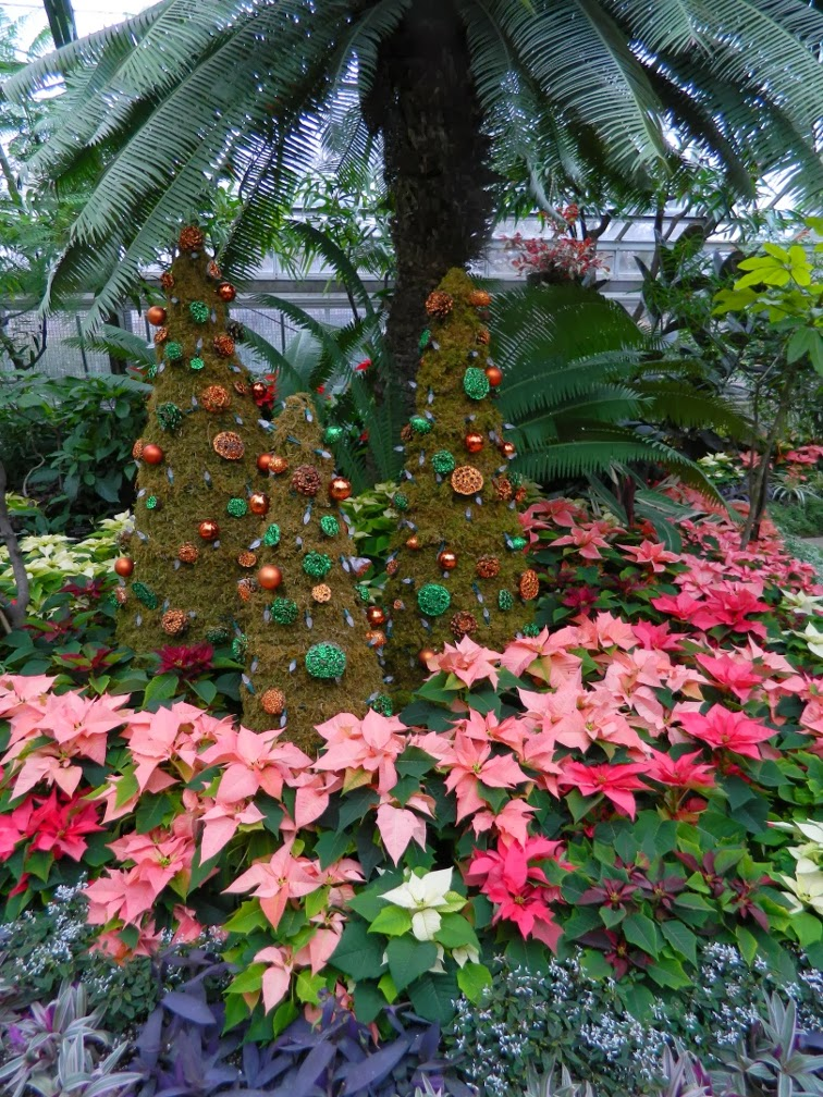 Allan Gardens Conservatory Christmas Flower Show 2013 topiary by garden muses: a Toronto gardening blog