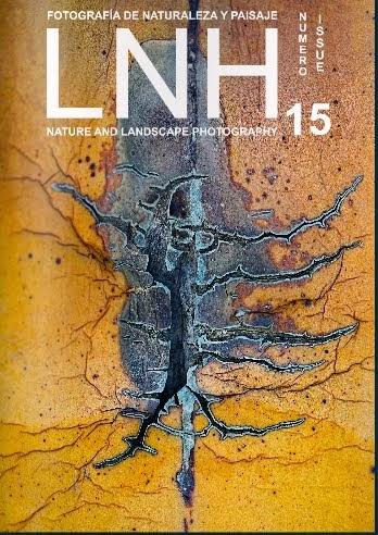 Revista LNH