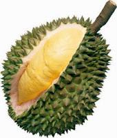 Manfaat Buah, Biji, Kulit dan Daun Durian