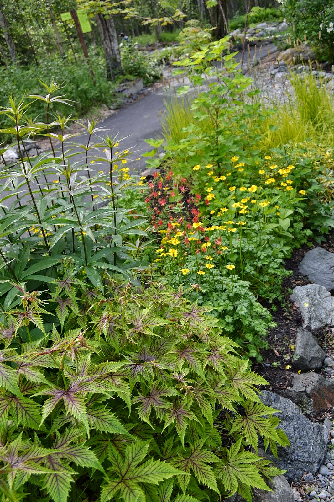 Alaska Botanical Gardens Alaska Botanical Garden
