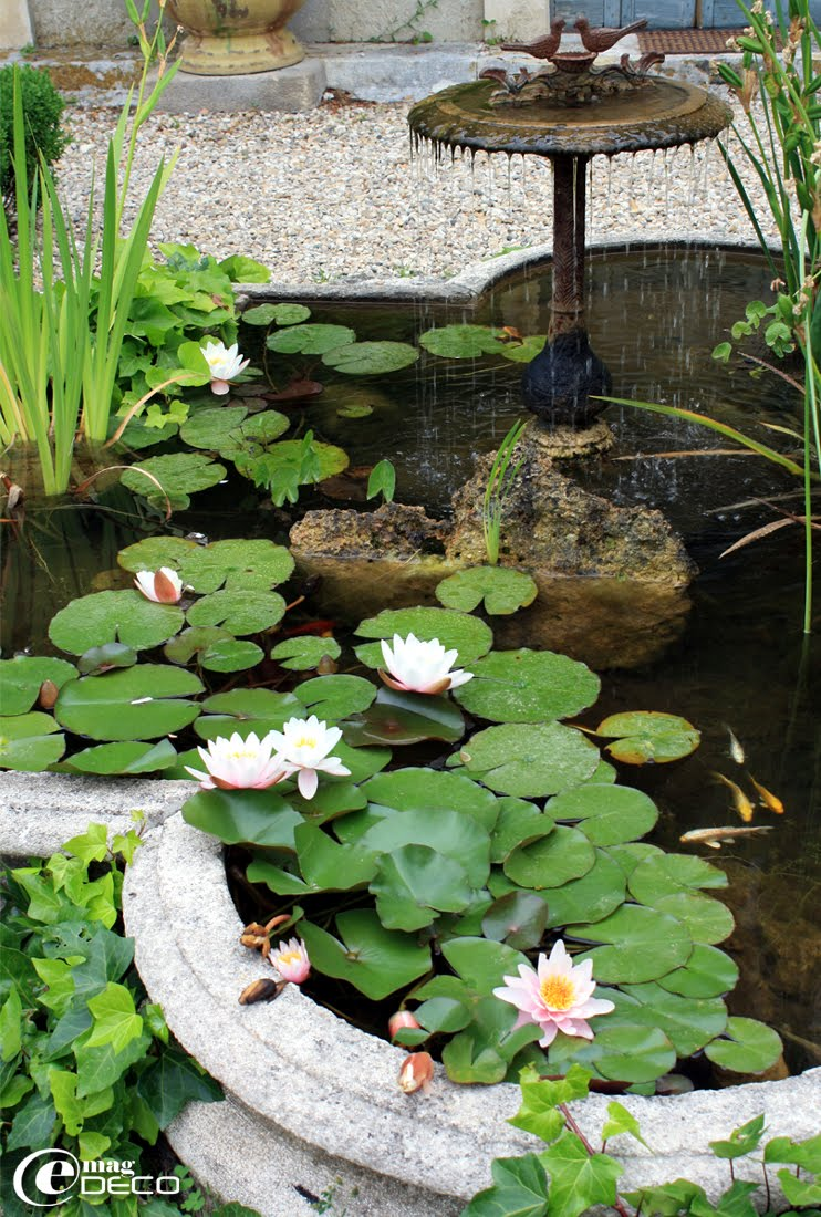 Détail d'un bassin en pierre avec sa fontaine servant à l'ablution des oiseaux.