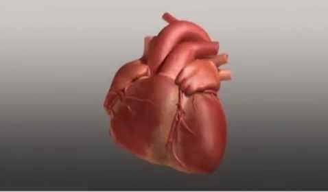 gejala-gejala-penyakit-jantung-koroner