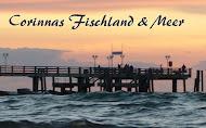Mein Fischland-Blog