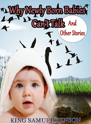 Why Newly Born Babies Can't Talk and Other Stories (Children books)