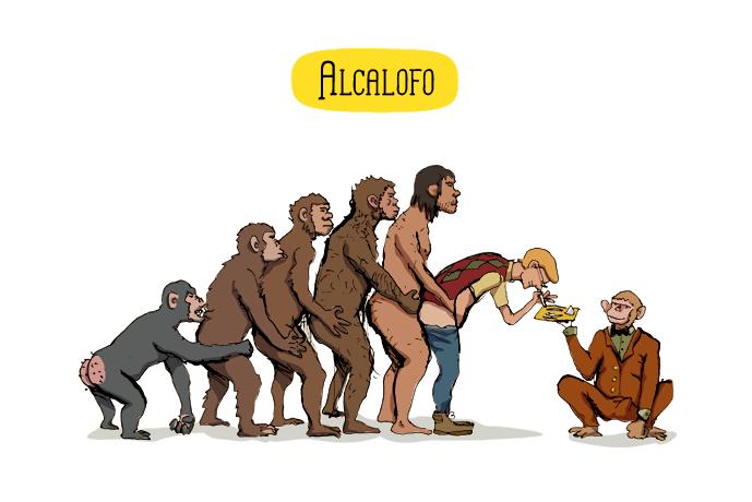 ALCALOFO