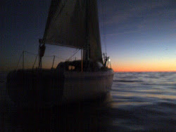 Sailing at Dusk in Shark infested Waters