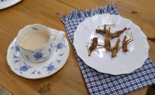 Menu Makanan Dari Serangga ala Jepang