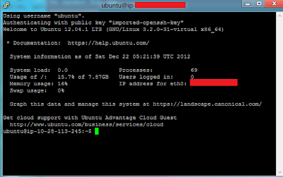 established connection to ec2 instance from Putty.