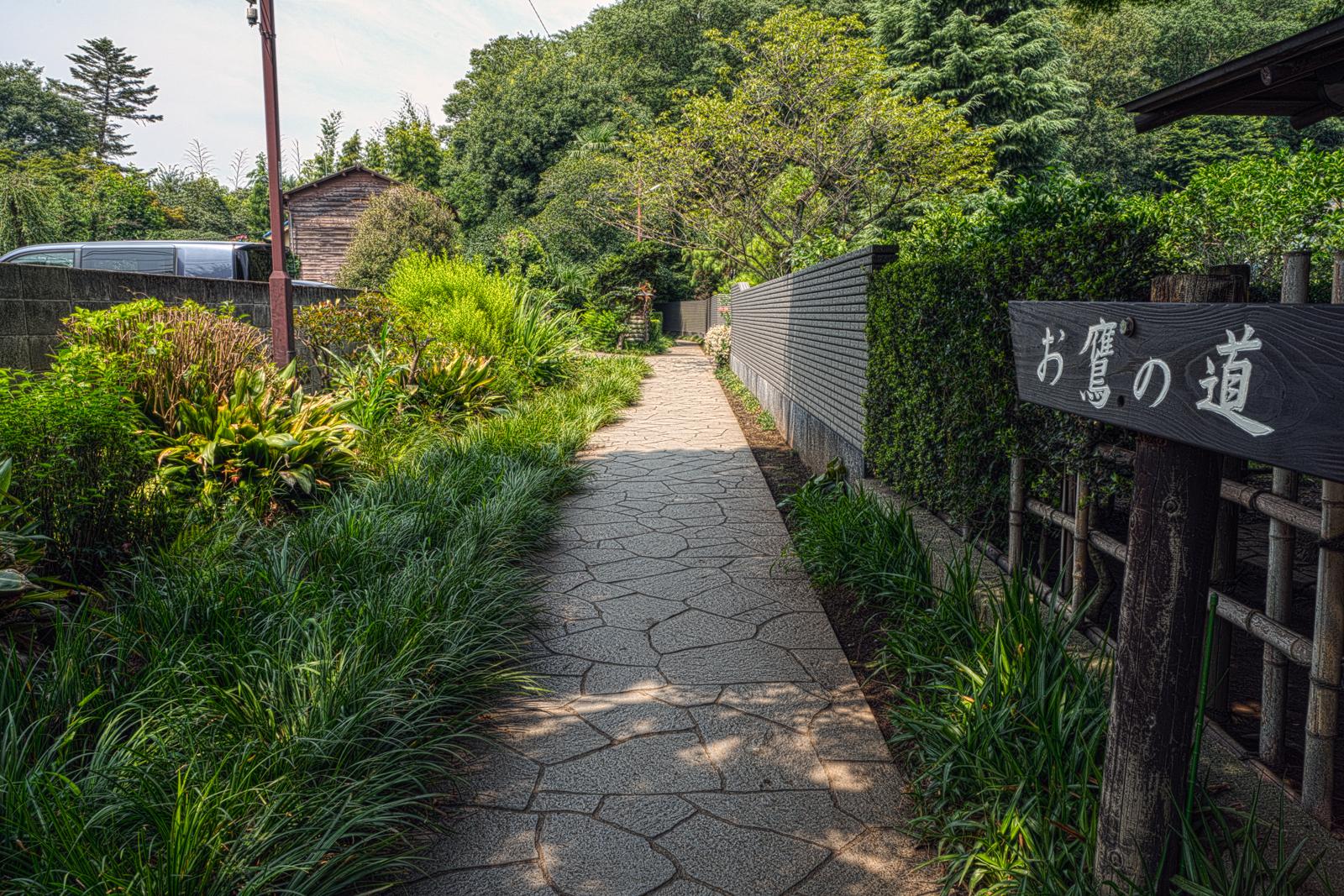 お鷹の道、清流沿いの小径の写真