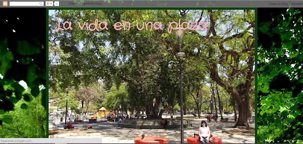 La vida en una plaza