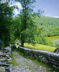 RACCONTI DI VIAGGIO - www.mastrohora.it/