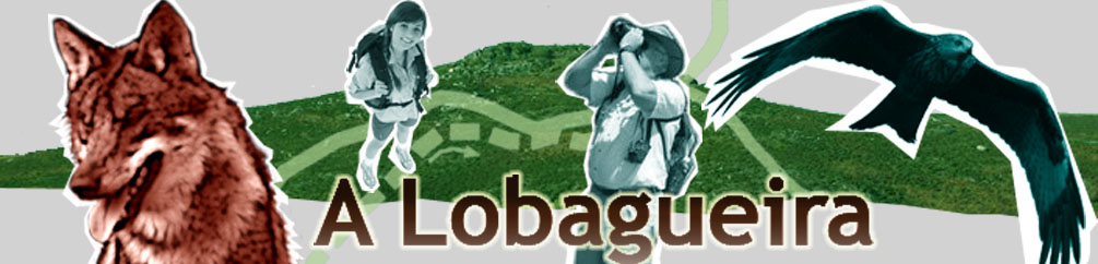 A LOBAGUEIRA