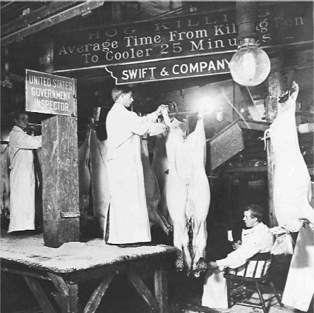 the meatpacking industry of 1906