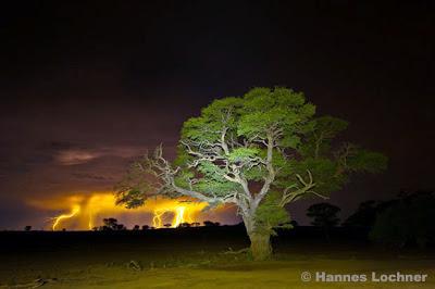 Lightning in the Kalahari