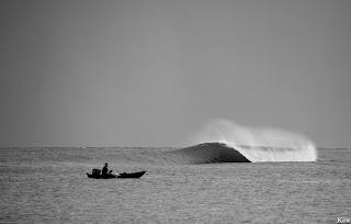 photo de surf 8912
