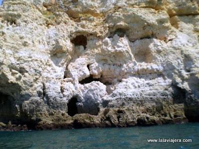 Calavera, Grutas Lagos, Algarve Portugues