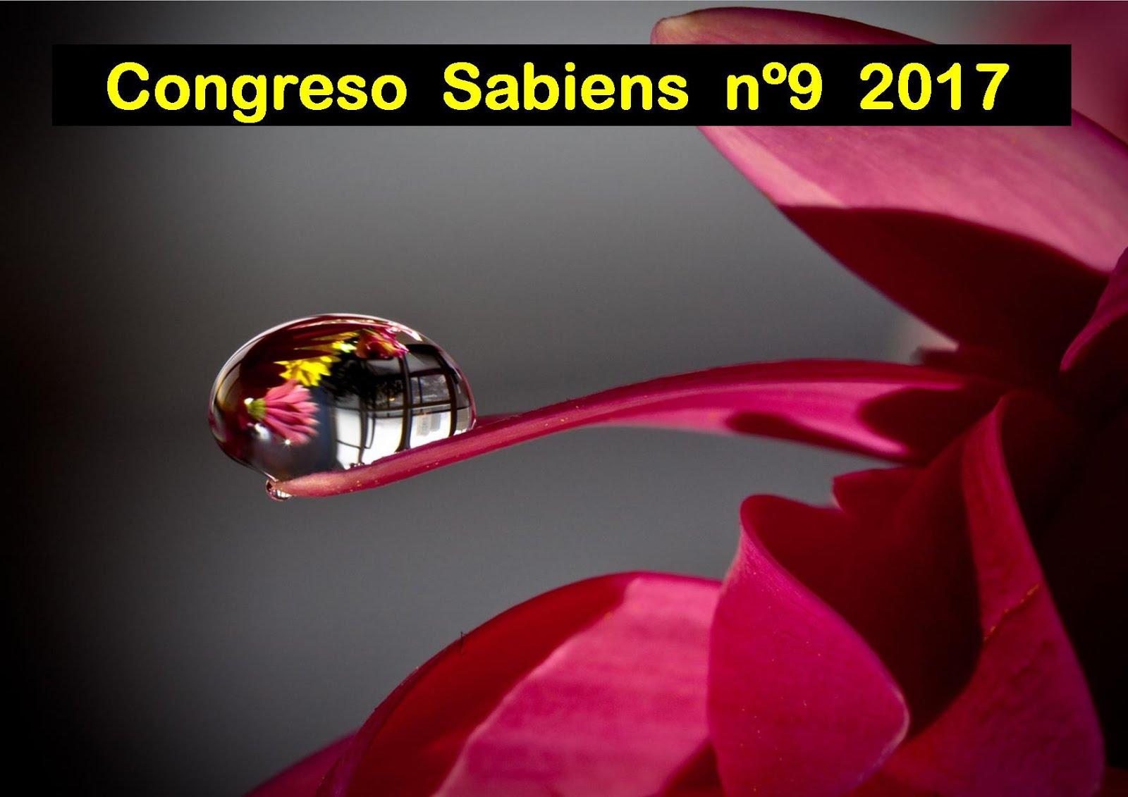 CONGRESO SABIENS nº9 2017