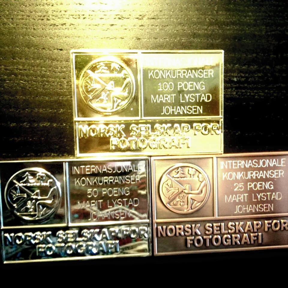 Plaketter NSFF