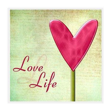 Amor e Vida