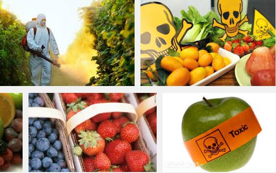 Pesticide in Fruits