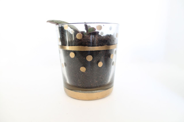 spray paint polkadot plant pot tutorial