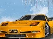 3d Soğuk Yarış