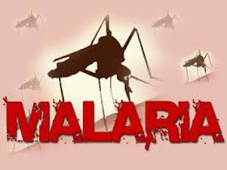 Cara Mencegah Penyakit Malaria