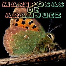 MARIPOSAS DE ARANJUEZ EN FACEBOOK