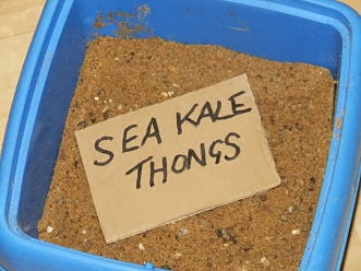 Stored sea kale thongs