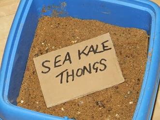 Stored sea kale thongs