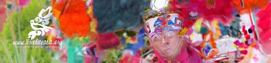 Vive Oaxaca, Página Oficial / Cultura y Turismo de Oaxaca