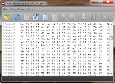 como-abrir-e-editar-um-exe-executavel