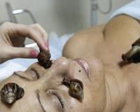 Terapi Facial Dengan Bekicot