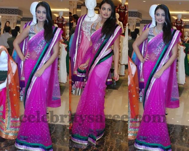 Nikitha Narayan Tissue Georgette Saree