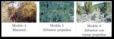 Modelos 4,5 y 6 según Rothemel