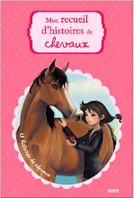 Mon recueil d'histoires de chevaux