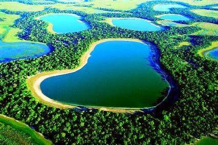 Pantanal/internet