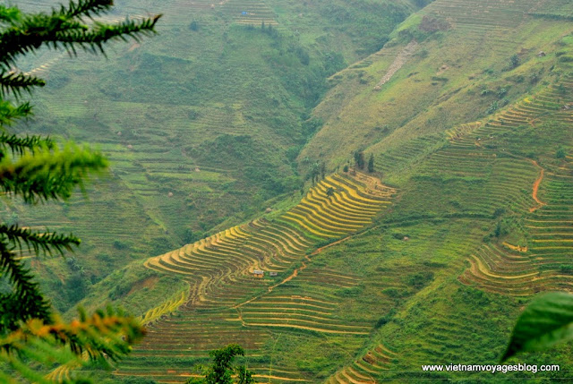 Temps de récolte de Yen Minh vers Ha Giang - Photo An Bui