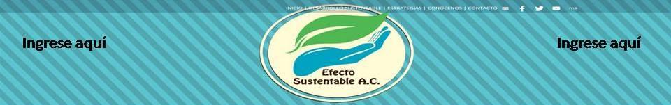 publicidad efecto sustentable