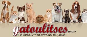 gatoulitses