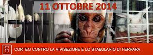 11.10.2014 FERRARA CONTRO LA VIVISEZIONE