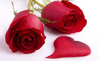ورود للحبايب رومانسيه2014_2015 كشخه ومعاني