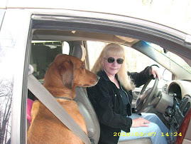 Clara and Dixie Lee In Van