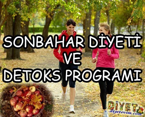detoks programı