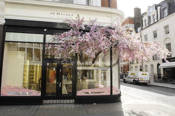 The Bloom Room Florist London