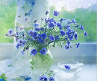 ramo de flores lilas Fotografias de jarrones de cristal
