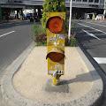中央分離帯信号,渋谷ハチ公前〈著作権フリー無料画像〉Free Stock Photos