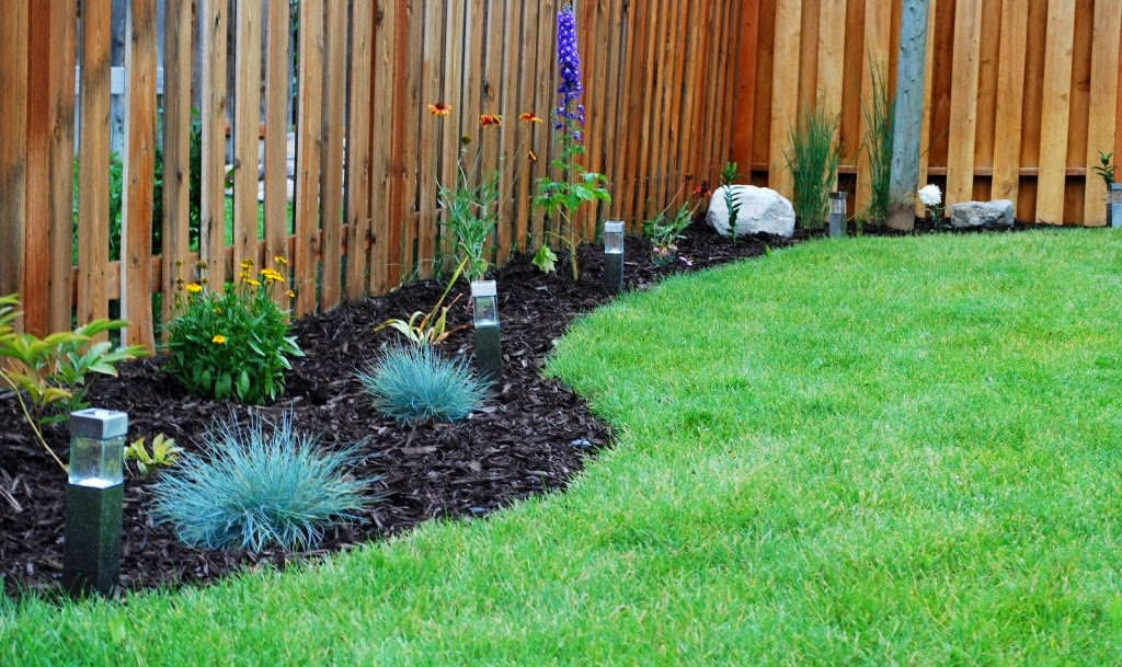 simple backyard decorating ideas