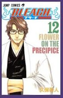Bleach tomo 12